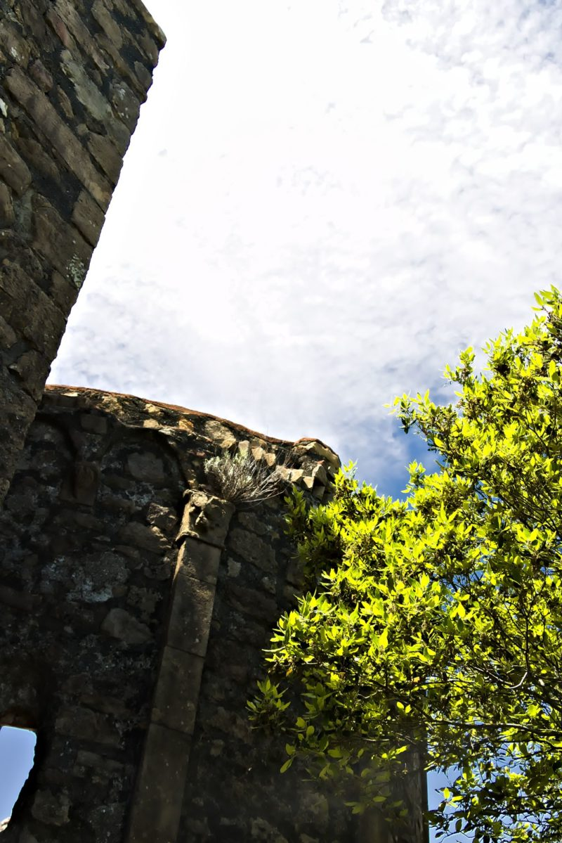 Rovine dell'eremo di Sant'Antonio a Punta Mesco. Cinque Terre