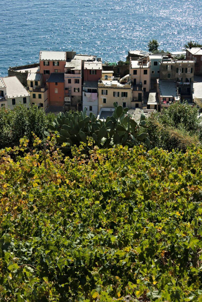 Vernazza. Three elements. Mare, architettura, natura alle Cinque Terre.