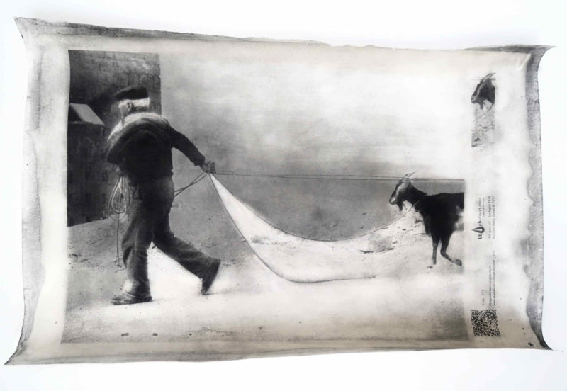 Foto d'arte Sardegna. Il pastore sardo rientra con le sue caprette