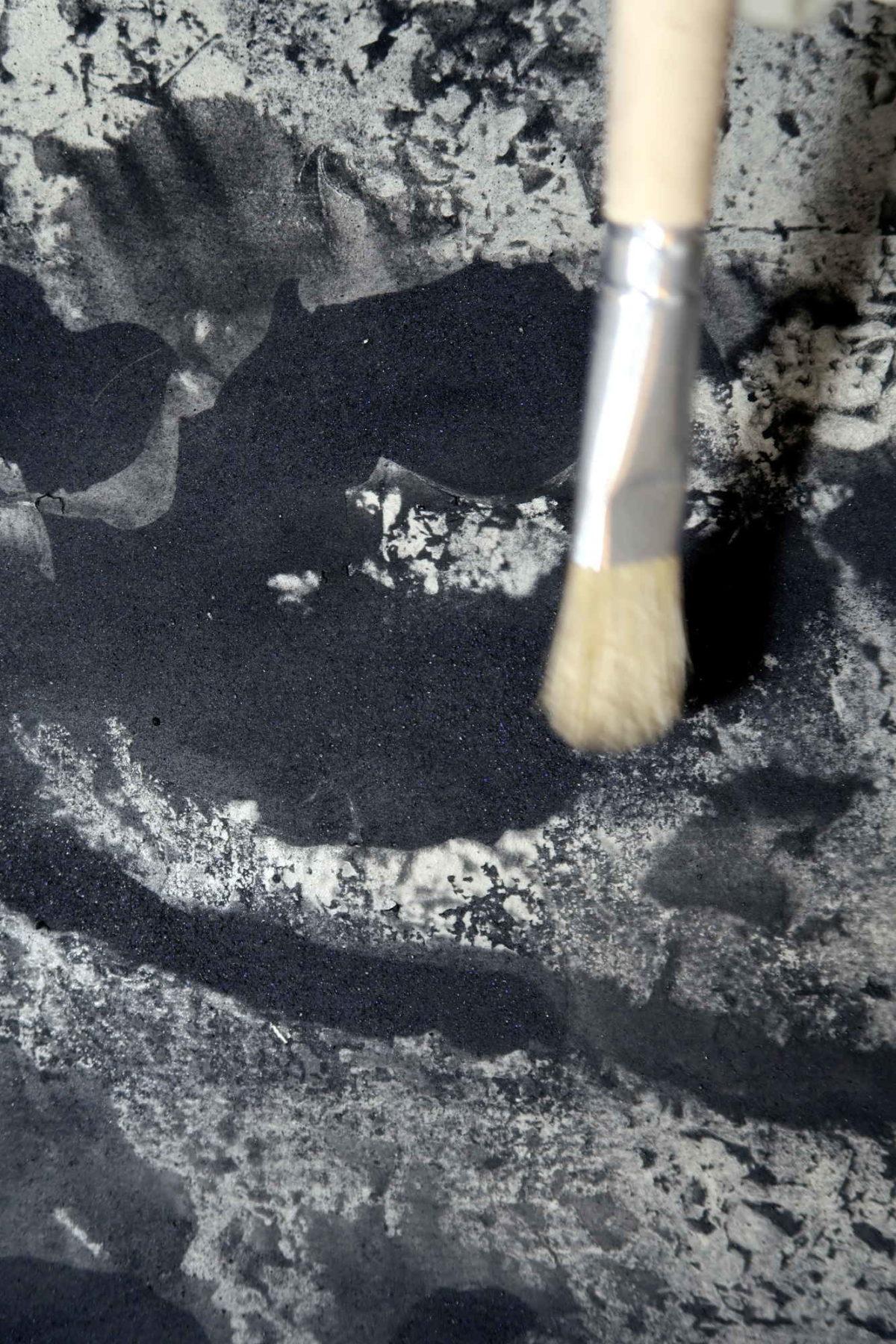 Cinque Terre artistic photography. Detail Sciacchetrà shadows.