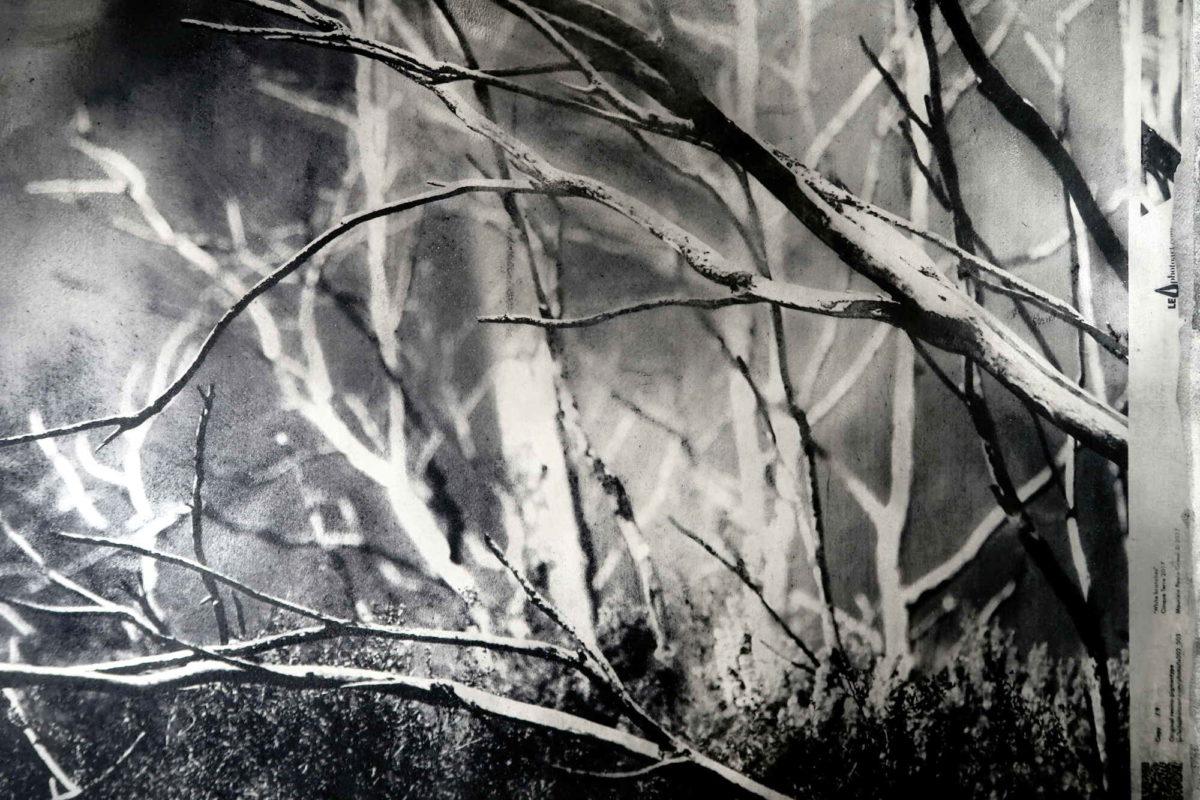 Cinque terre photo art.